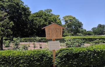 二之丸東庭園1