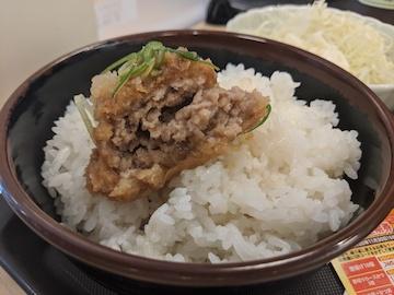 おろしメンチハンバーグ定食(4)