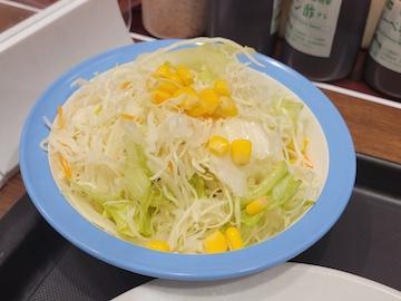 ごろごろ煮込みチキンカレー(生野菜セット)