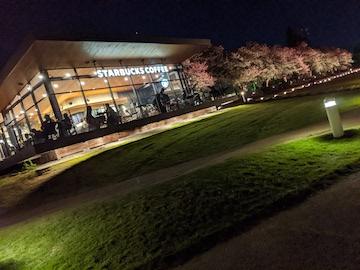 富岩運河環水公園の夜(5)