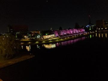 富岩運河環水公園の夜(8)