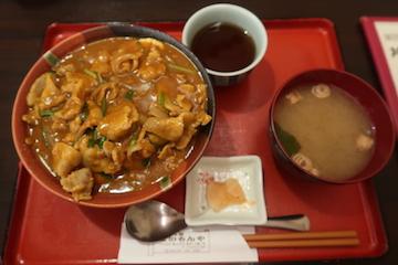 豚丼カレー(1)