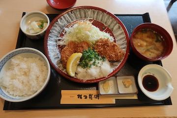 ねぎおろしヒレカツ定食(1)