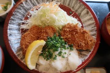 ねぎおろしヒレカツ定食(3)