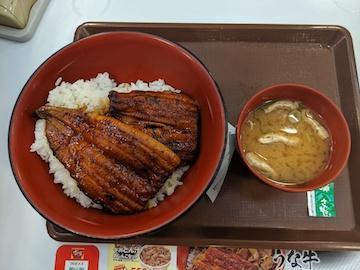 特うな丼(1)