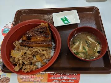 うな牛(1)