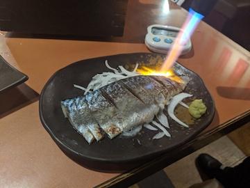 炙りしめ鯖(1)