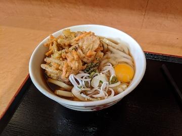 かき揚げ天玉うどん(1)