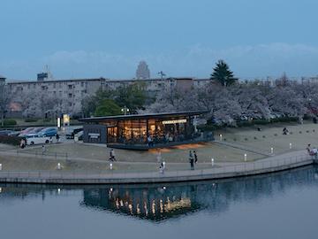 富岩運河環水公園の桜(1)