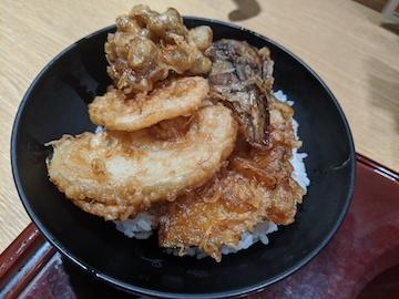 ごまそばと野菜天丼のセット(2)